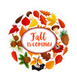 hello autumn poster of fallen leaves and mushroom vector image vector image