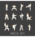 martial arts eps10 format vector image