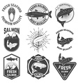 Set of the fresh salmon labels emblems and design vector image vector image