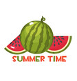 the inscription summer time and juicy ripe vector image vector image