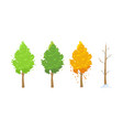 tree in different seasons vector image vector image