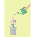 Hand watering flower in pot
