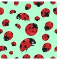 Summer seamless pattern with ladybirds vector image
