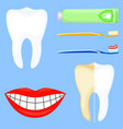 colorful cartoon teeth cleaning set vector image