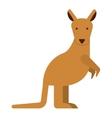 cute kangaroo isolated icon design vector image
