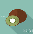 Kiwi flat icon with long shadow vector image