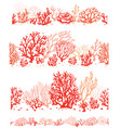 set corals border seamless patterns vector image vector image
