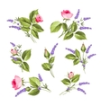 The Flowers set vector image
