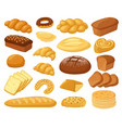 cartoon bread bakery products roll baguette vector image