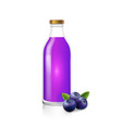 glass bottle of blueberry juice berry drink vector image