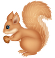 Squirrel cartoon holding nut vector image vector image