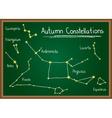 Autumn Constellations on chalkboard vector image vector image