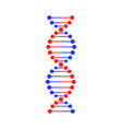 dna strand symbol isolated on white background vector image