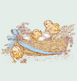 easter basket with newborn chickens and eggs vector image vector image