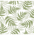 fern leaves seamless pattern background vector image