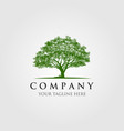 trees logo design vector image vector image