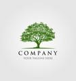 trees logo design vector image