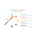 baseball bat and balls infographic template vector image