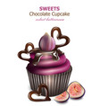 chocolate cupcake with fig fruits retro vector image vector image