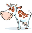 cow character standing isolated on white vector image vector image