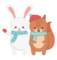 cute rabbit and squirrel with scarf and mittens vector image