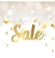 Happy Sale card vector image