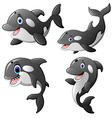 killer whale set cartoon vector image vector image