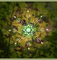 mandala on green leaves nature background vector image vector image