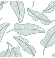 seamless tropical pattern with banana leaves vector image