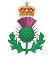 thistle symbol of scotland vector image vector image