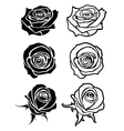 Close up rose tattoo logos floral vector image vector image
