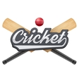 Cricket leather ball and wooden bats vector image vector image