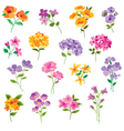 flowers clipart vector image vector image