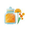 glass jar of honey and dandelion flower natural vector image vector image