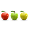 set of red yellow and green apples vector image vector image