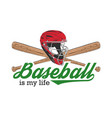 sketch baseball helmet and bat with typography vector image vector image