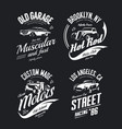 tee-shirt logo isolated set vector image vector image
