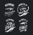 tee-shirt logo isolated set vector image vector image