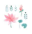 Watercolor floral set with lotus flowers vector image vector image
