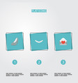 flat icons jewelry sandal card elements vector image vector image