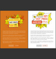 hot price exclusive products buy now super offer vector image vector image