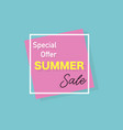 summer banner special offer stylish design vector image vector image
