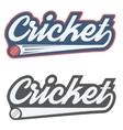 Vintage cricket label and badge vector image