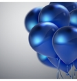Realistic glossy balloons vector image vector image