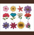 set floral decoration vintage style vector image