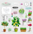 set pot plants and garden tools vector image vector image