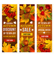 autumn sale and discount price banner template set vector image vector image