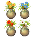 Big pots with flowers vector image vector image