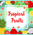 card with tropical fruit vector image