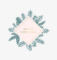 merry christmas abstract botanical card vector image vector image